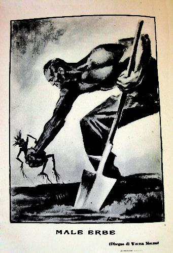 Disegno di Walter Molino, 'Gerarchia', agosto 1935.  I neri raffigurati come razza inferiore da estirpare - Archivio privato, Arezzo