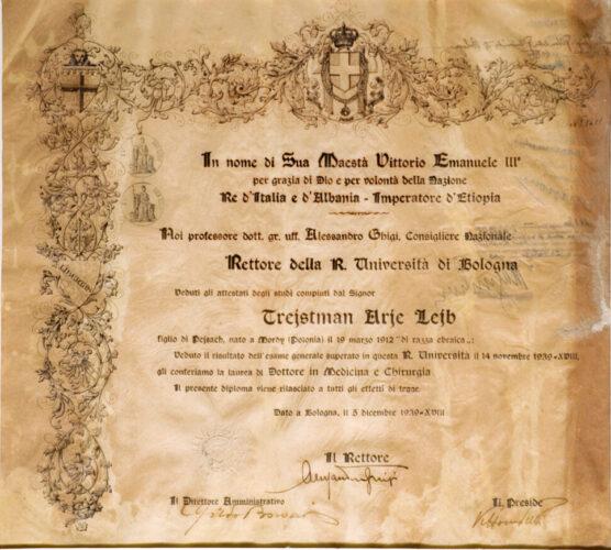 """Diploma di laurea di Arie Leib Treistman con la scritta """"di razza ebraica"""". Bologna, 5 dicembre 1939 - Archivio CDEC"""